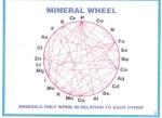 mineralwheel2